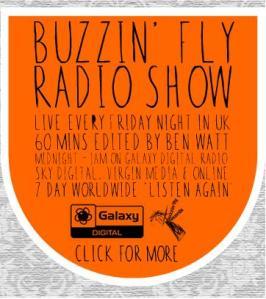 buzzin fly